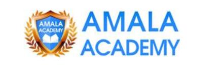 amala academy seo client