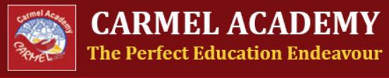 carmel academy seo lead